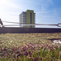 altiligne_terraza_verde-vertic
