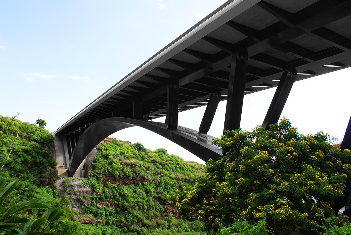puente-de-la-ravine-fontaine-linea-de-vida-inclinada-combiligne-vertic